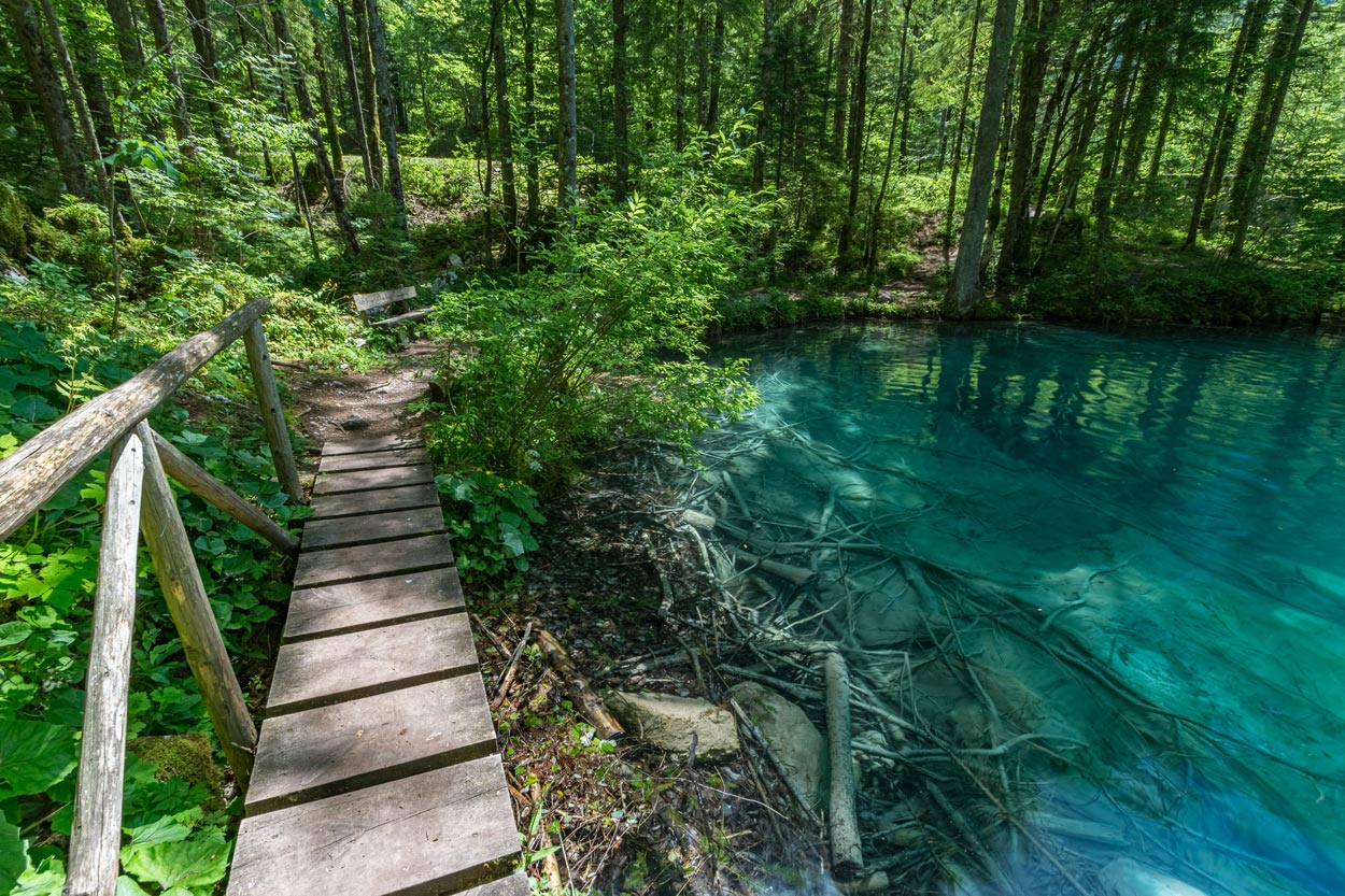 Crystal clear Slovenian Lake in the woods