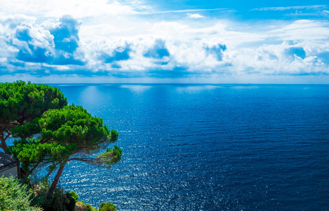 Adriatic sea with clouds and pine trees
