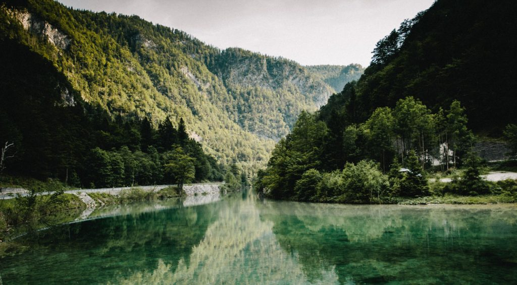 River Sava Bohinjka surrounded by forests