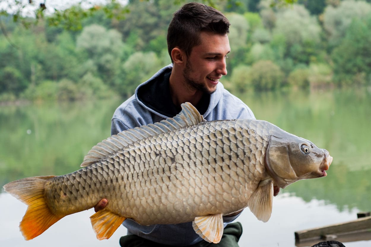 Fishing guide holding a carp