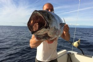 Small tuna in the hands of our captain on his boat on Adriatic sea